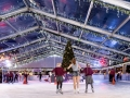 Bluewater Ice Rink Christmas Tree Lights Night